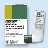 Атровент Н бал.(аэр. д/ингал.) 20мкг/доза 200доз 10мл №1 с клап. дозир. и мундшт.